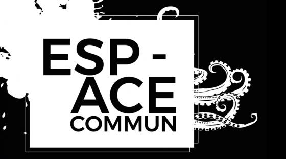 Espace Commun // Exposition collective – Foix – 12 Janvier 2018